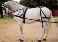Nylon single driving harness with breastplate - Hagen